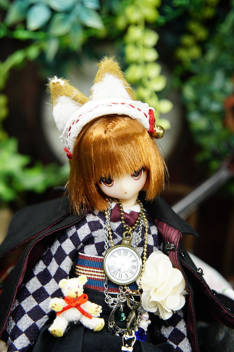 orange_pekoe_8_2020_7_17_DSC00107