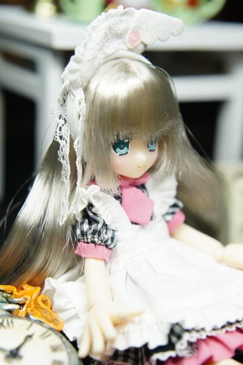 orange_pekoe_4_2020_2_27_DSC09097