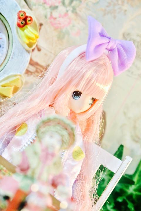 orange_pekoe_8_2017_4_27_IMG_5000