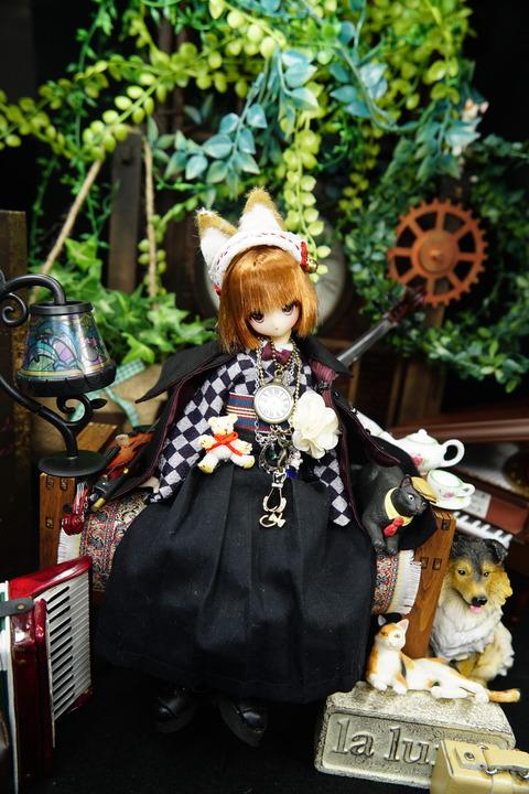 orange_pekoe_4_2020_7_17_DSC00103