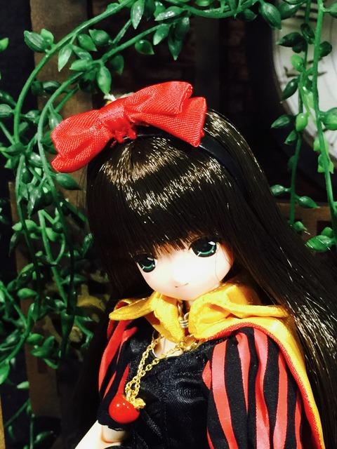 orange_pekoe_1_2021_10_19_IMG_3495