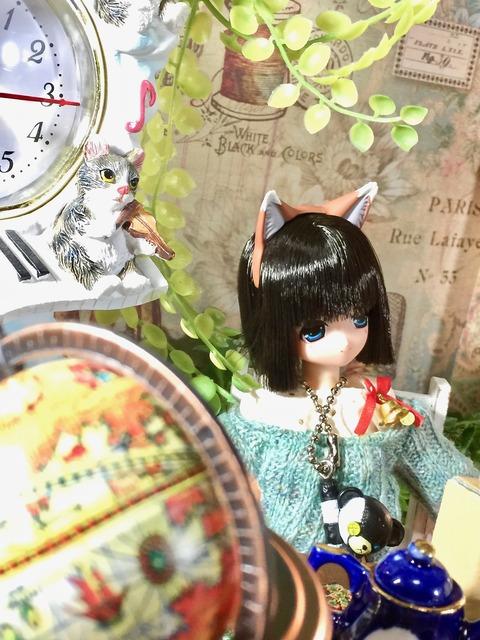 orange_pekoe_2_2020_4_3_IMG_1718