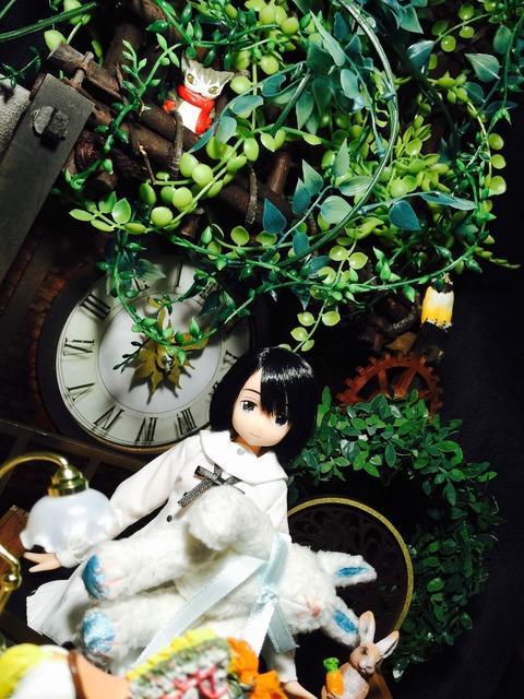 orange_pekoe_2_2016_7_24_IMG_8324