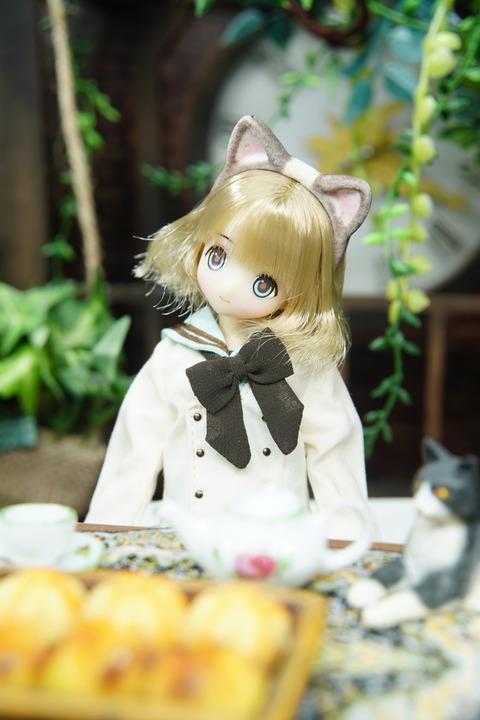 orange_pekoe_2_2021_6_15_DSC01486