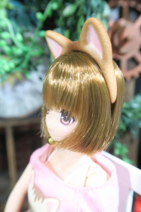 orange_pekoe_3_2017_4_23_IMG_6807