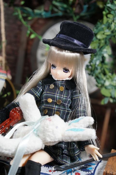 orange_pekoe_7_2018_5_29_DSC00939