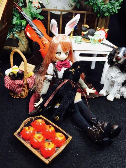orange_pekoe_5_2019_4_17_IMG_9819
