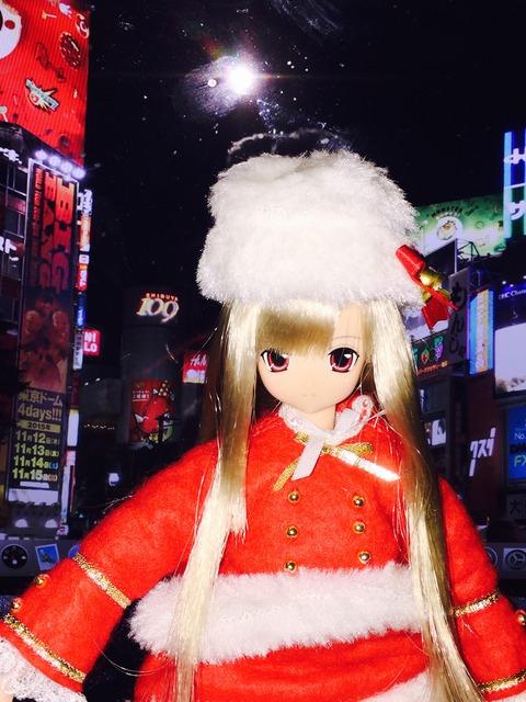 orange_pekoe_1_2015_12_25_IMG_5151