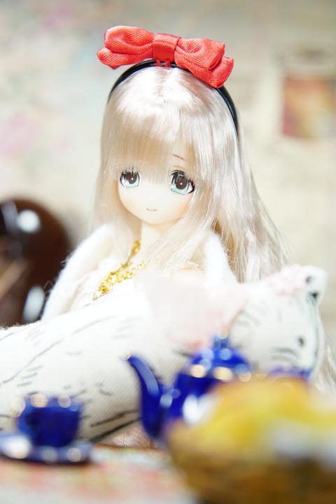 orange_pekoe_8_2019_5_20_DSC04460