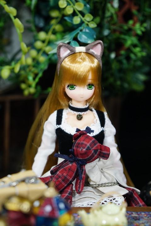 orange_pekoe_2_2018_5_30_DSC03691