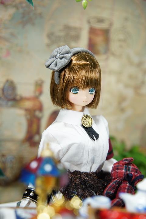 orange_pekoe_1_2018_10_23_DSC08343