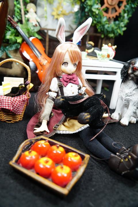 orange_pekoe_5_2019_8_27_DSC03483