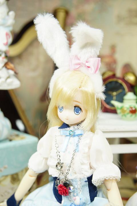 orange_pekoe_2_2019_8_10_DSC07384