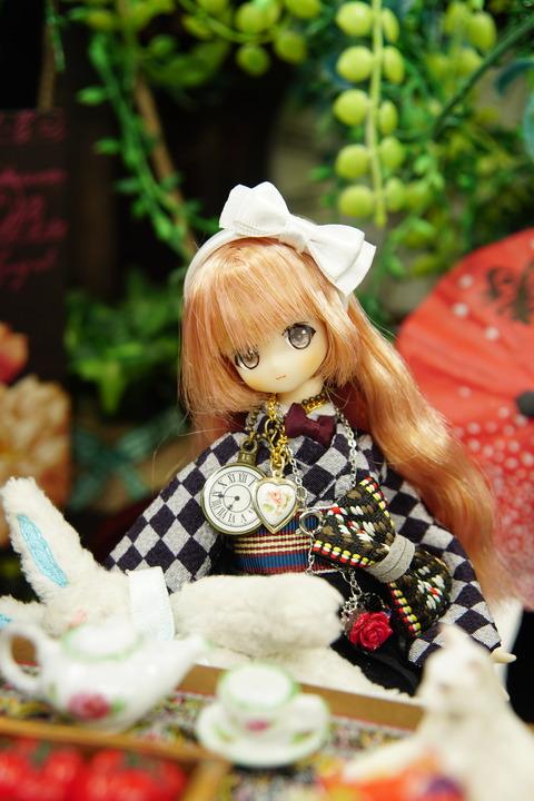 orange_pekoe_8_2020_8_20_DSC01558