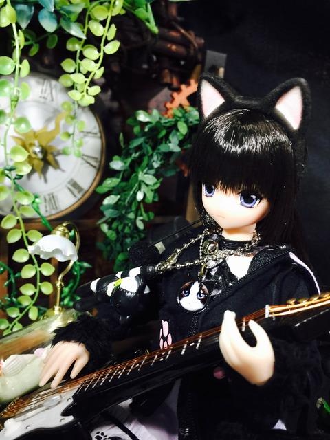orange_pekoe_1_2017_7_19_IMG_4440