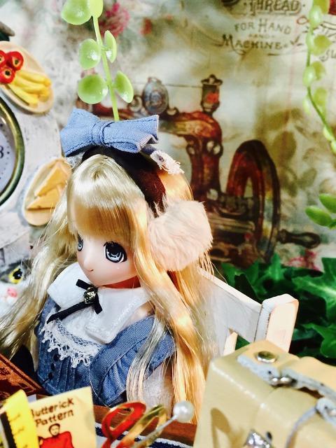 orange_pekoe_2_2021_2_22_IMG_1846