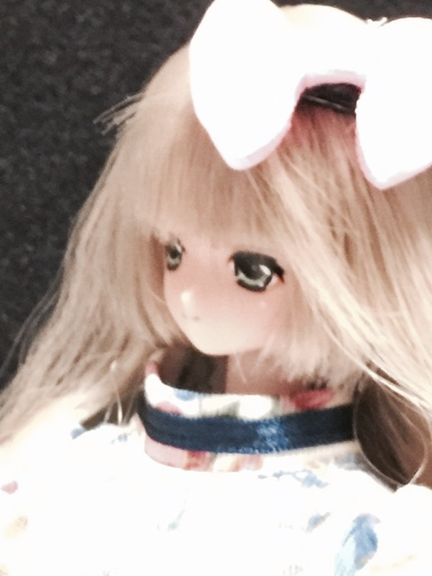 orange_pekoe_4_2015_11_29_IMG_4308