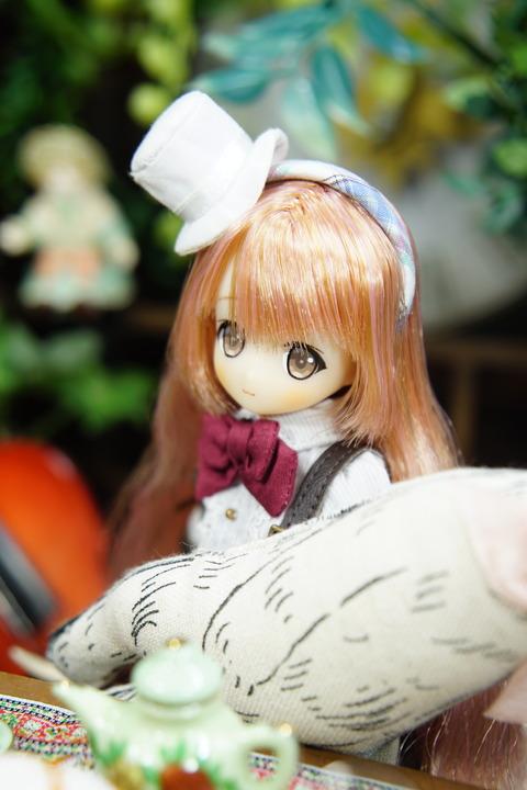 orange_pekoe_6_2019_4_7_DSC03429