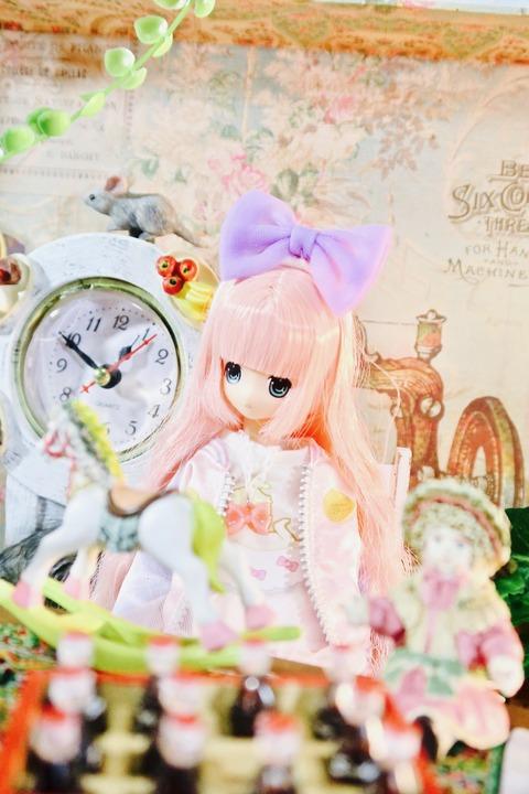 orange_pekoe_3_2017_4_27_IMG_4989