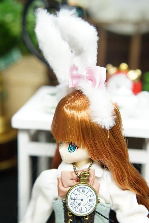 orange_pekoe_8_2019_10_3_DSC09528
