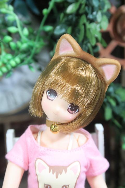 orange_pekoe_8_2017_4_23_IMG_6816