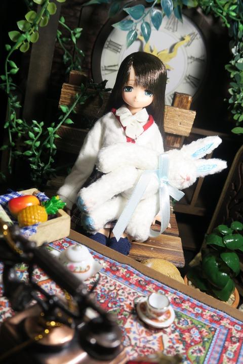 orange_pekoe_1_2016_7_16_IMG_1570