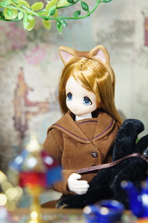 orange_pekoe_1_2018_6_2_DSC03943