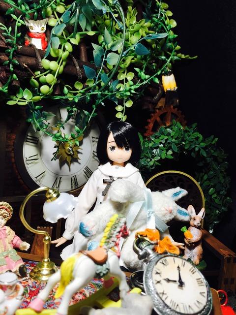 orange_pekoe_6_2016_7_25_IMG_8321