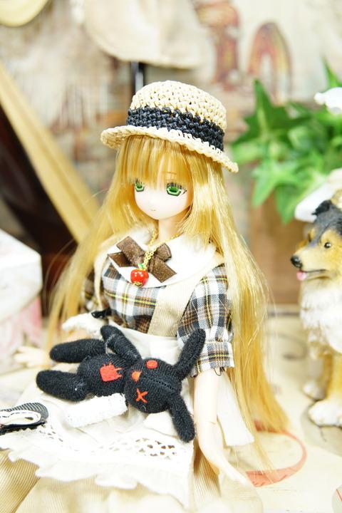 orange_pekoe_5_2019_11_28_DSC02525