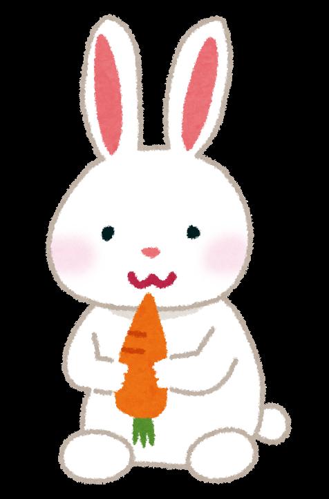 animal_usagi_white