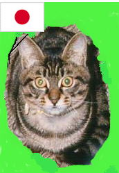 shima3-green.jpg