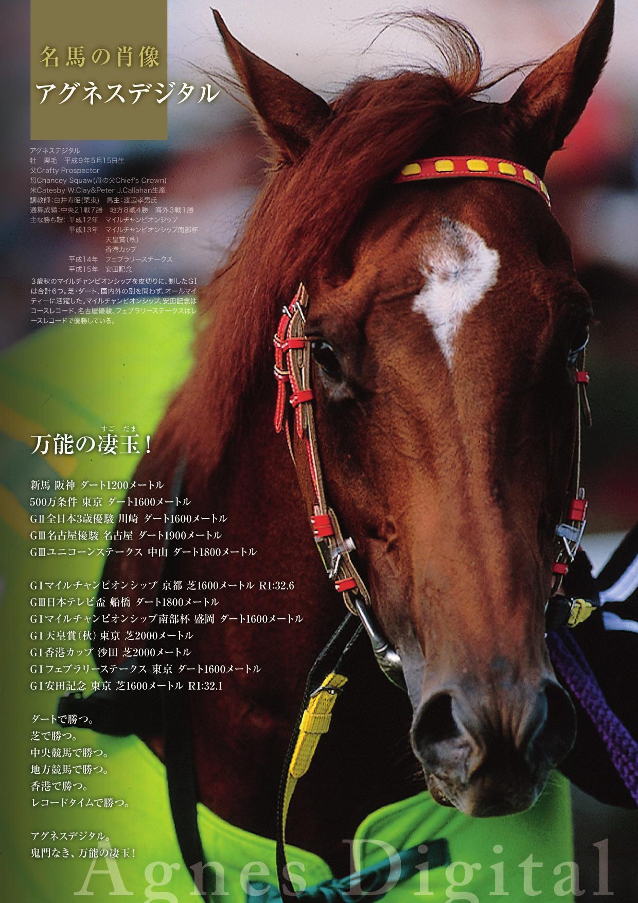 レープロ「名馬の肖像」──安田記念はアグネスデジタル──「万能の凄 ...