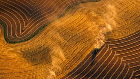 130820ジェームズタウンの小麦畑@アメリカ ノースダコタ州