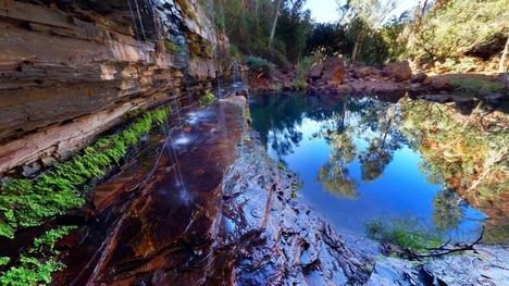 130913カリジニ国立公園@西オーストラリア