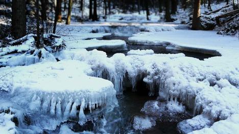 140116バイエルンの森国立公園@ドイツ バイエルン州
