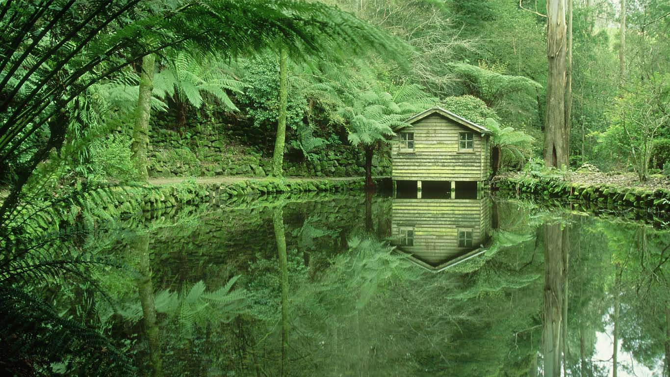 140704アルフレッドニコラス記念庭園@オーストラリア ビクトリア州  (過去記事) ・Bin