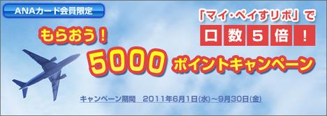 ANAカード会員限定もらおう!5000ポイントキャンペーン