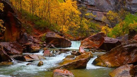 141022ノース・フォーク・ヴァージン川@ユタ州 ザイオン渓谷