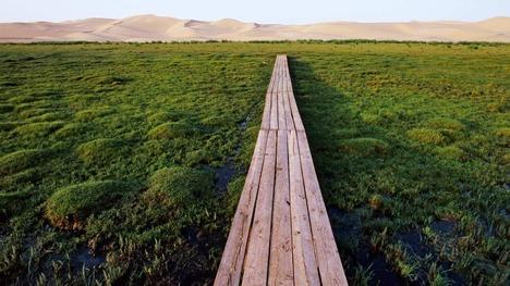 130630ゴビ砂漠@モンゴル国