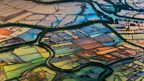 141030マカッサルの水田@インドネシア 南スラウェシ州