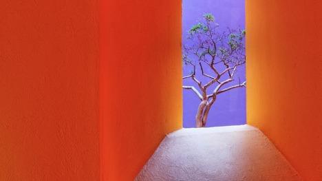 130916オレンジ色の路地@メキシコ