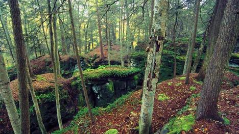 130918ベアタウン州立公園@ウェストバージニア州