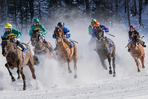 horse-racing-4018609_1920
