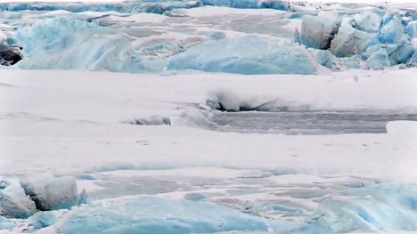 130120コウテイペンギン@南極大陸