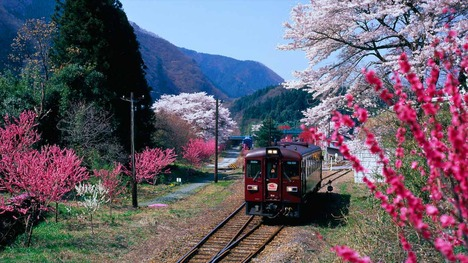 140328わたらせ渓谷鐵道@群馬 神戸駅