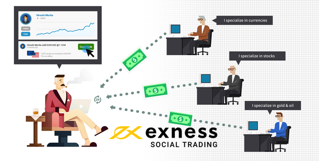 what-is-exness-social-trading-how-to-use-it