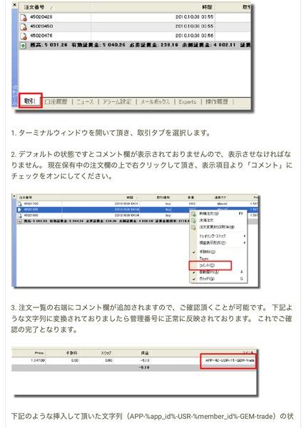 gemforexsignalprovider_page-0007