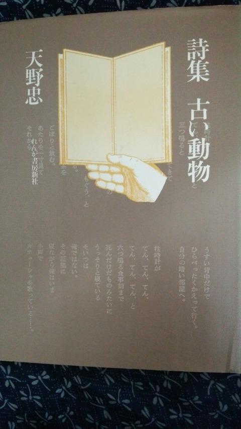 DSC_0196 (2)
