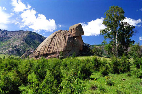 turtle-rock-mongolia[1](1)
