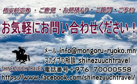shine zuuch travel